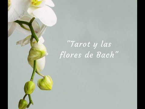 Tarot y las flores de Bach