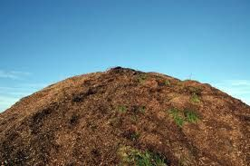 7 Factors Needed for a Compost Pile