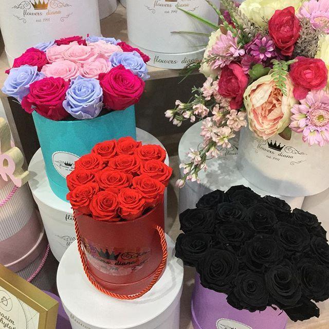 Last forever💐💋💪♣️. #women #goodmorning #love #slovakgirl #work #tag #czechgirl #roses #luxury #luxurylifestyle #style #instamood #bratislava #prague #flowers #goodmood #polishgirl #kyticka #inspiration #blogger #luxuryboxes #fashion #flowerbox #slovakblogger #tag #wedding #roses #luxury #luxurylifestyle #style #instamood #bratislava #prague #flowers #poland #hungary #goodvibes #polishgirl #kyticka #inspiration #pink #blogger #luxuryboxes #fashion #flowerbox