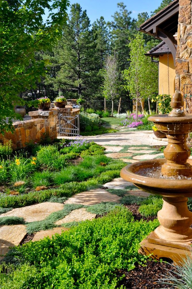 xeriscape yard ideas 87 best landscaping ideas images on pinterest landscaping ideas
