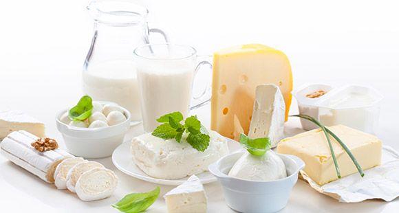 Expo Veneto: Cheese, milk and ice-cream - Agri-food Industry - Feeding - Events