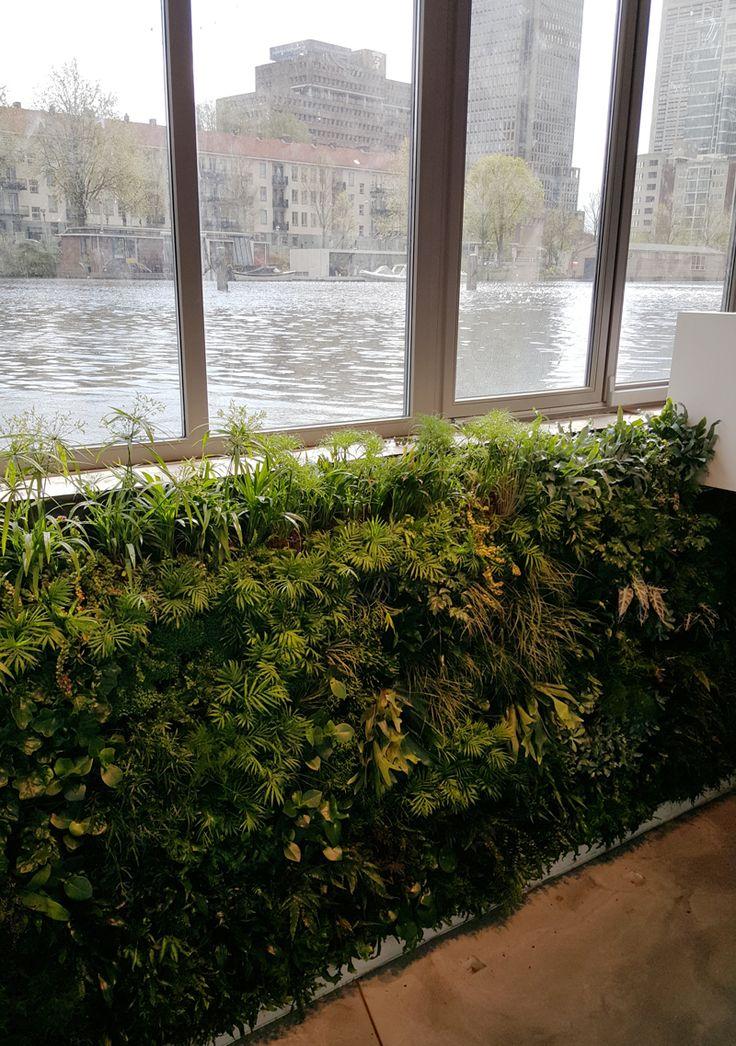 woonboot 3 1649 best Vertical Garden Living