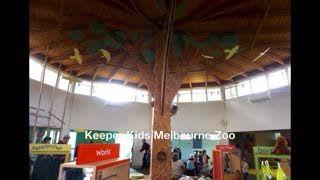 Keeper Kids Melbourne Zoo