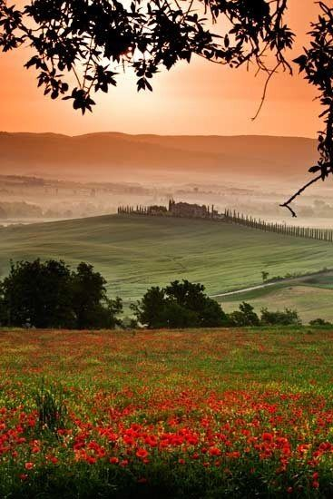 Amazing Scenery - Tuscany, Italy//Wayne Brittle Photography//  How far did he walk and how long did he wait for this perfect shot?