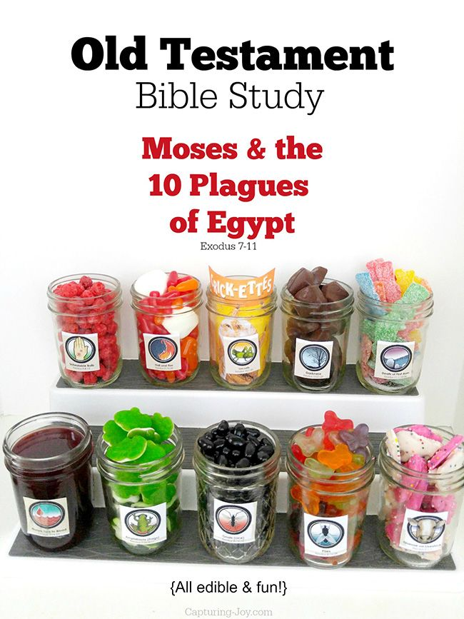 Old Testament Bible Study Moses and the 10 Plagues of Egypt, edible and fun!