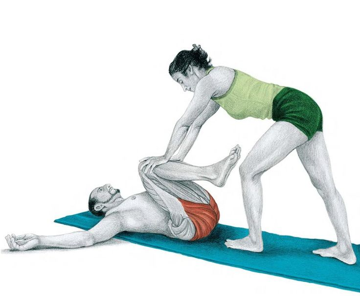 40. Flexion of the Hip and Knees With Assistance, in Decubitus Supine Position