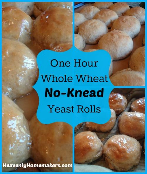 No Knead Rolls