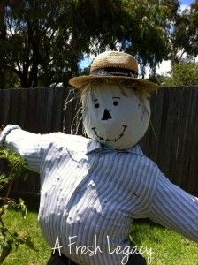 """Meet """"Mr Scarecrow"""". Find out how to make a garden scarecrow"""