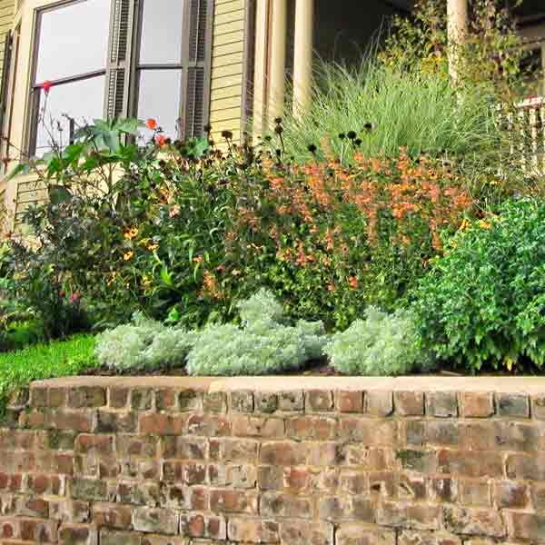 52 best Home - Pergola images on Pinterest | Backyard ideas ...