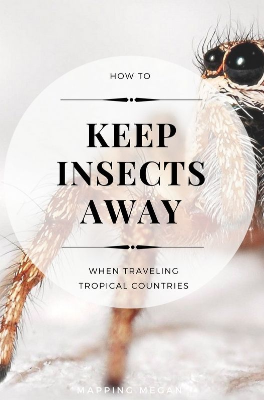 how to keep insects away