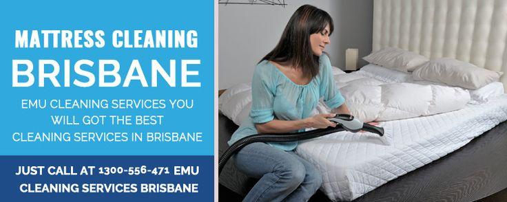 Best online dating for professionals in Brisbane
