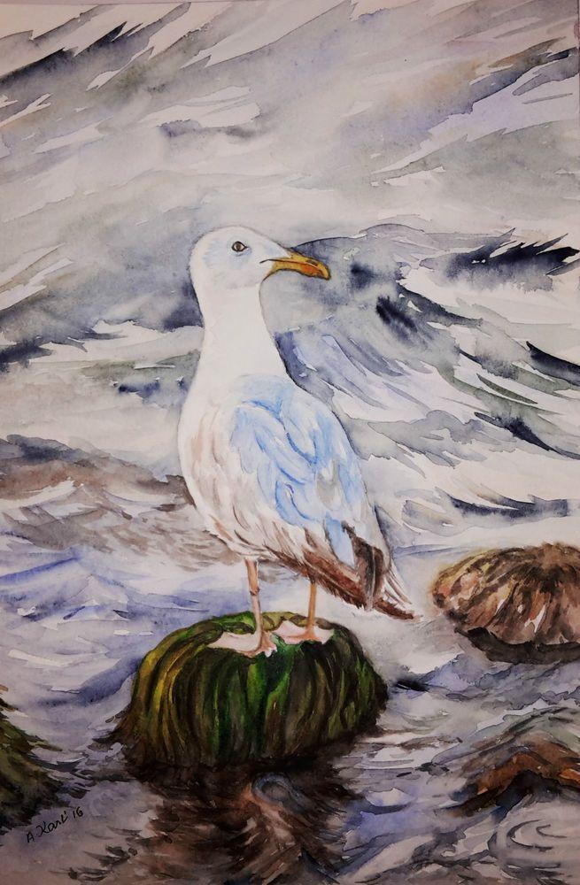 "Original Aquarell, ""Möwe"" (2.) 17x24 cm in Antiquitäten & Kunst, Malerei, Aquarelle | eBay"