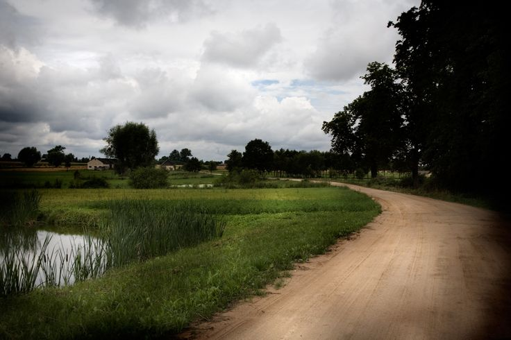 Droga żwirowa między stawem a parkiem w miejscowości Kawęczyn. Swojskie Klimaty.