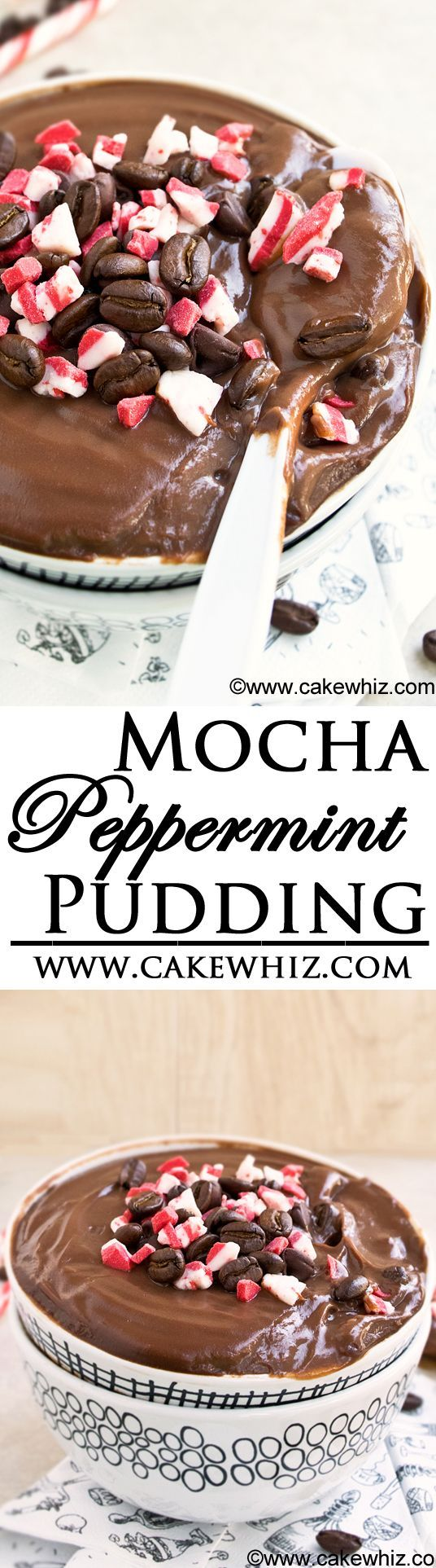This rich and creamy MOCHA PEPPERMINT PUDDING is the easiest dessert you will ever make! Packed with chocolate and coffee flavors and perfect for serving on Christmas! From cakewhiz.com