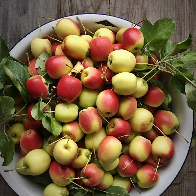 Pretty little crab apples. Fruit from the orchard.