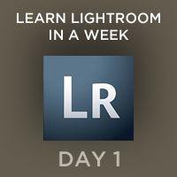 Learn Lightroom in a week-hmm, really? It's taken me a lot longer than that. Heh.