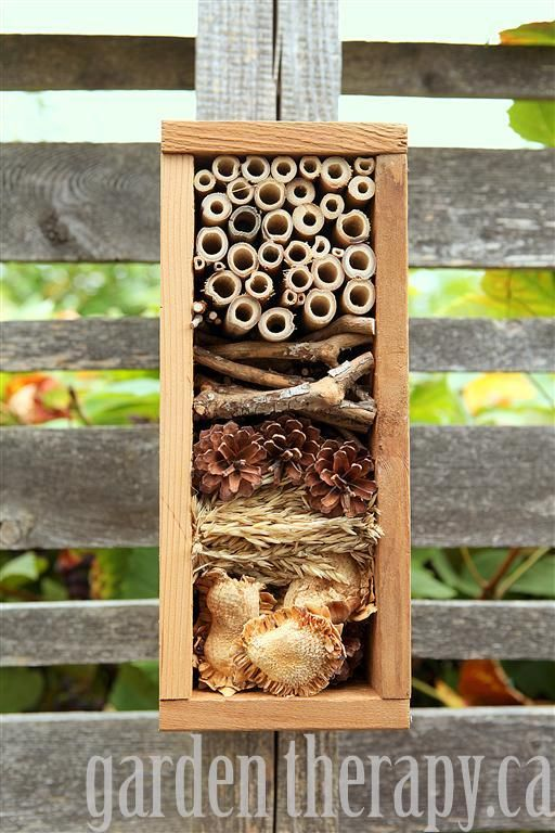 Overwinter beneficial insects in this beautiful bug hotel or get ready for spring.