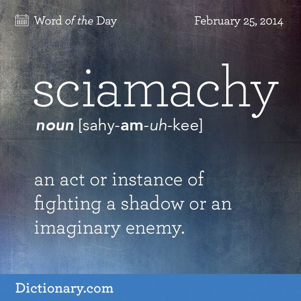 sciamachy   sahy-AM-uh-kee   , noun;     1. an act or instance of fighting a shadow or an imaginary enemy.