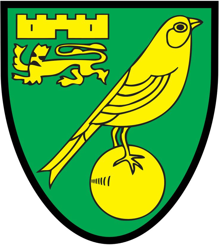 Norwich City FC is one of the most popular teams in England Premier League,many people love it and support it.