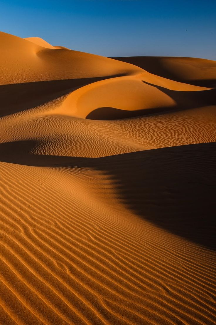 Sanddunes in the Rub al al Khali Desert (Empty Quarter - Abu Dhabi) which is the largest sand desert in the world