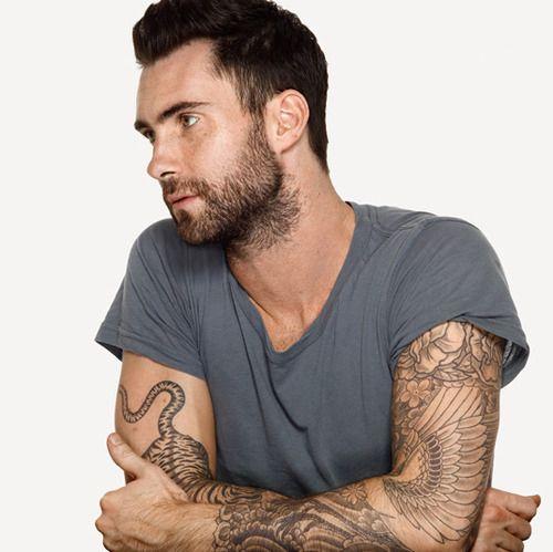 sexy men | adam levine, boy, hot, man, sexy - inspiring picture on Favim.com
