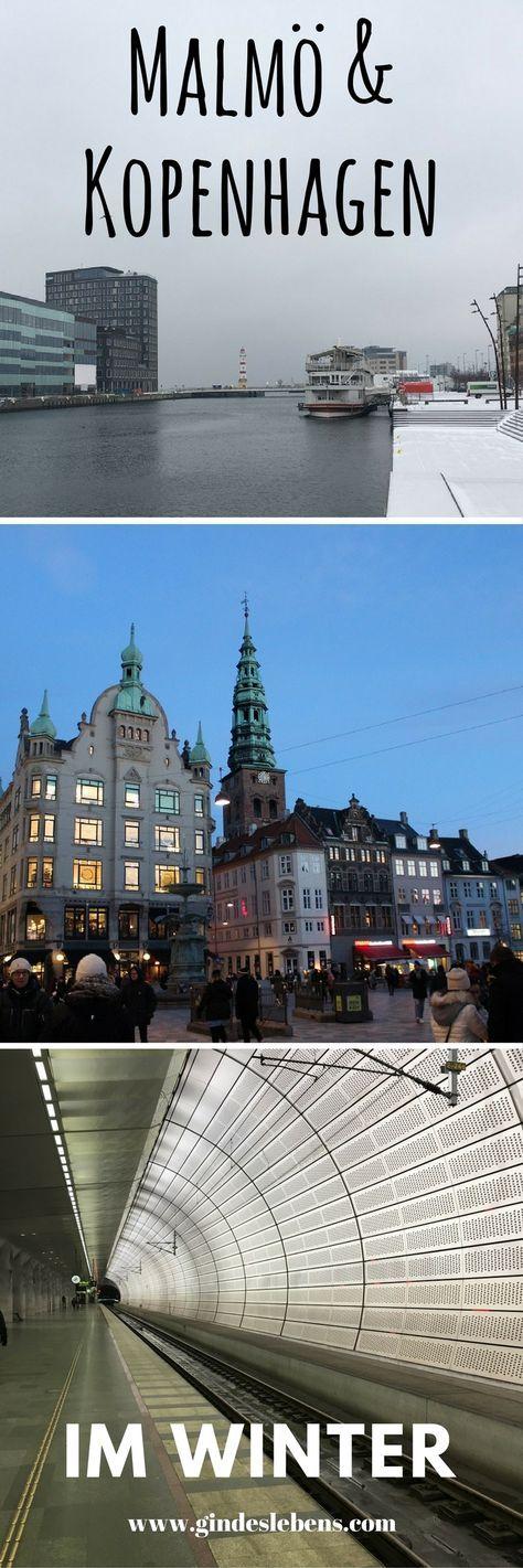 Malmö Tagesausflug von Kopenhagen im Zug über die Öresundbrücke