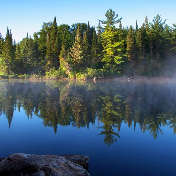 Paradises On Earth - Algonquin Park, Canada. Canoeing on these pristine lakes in our community is breath taking at times.