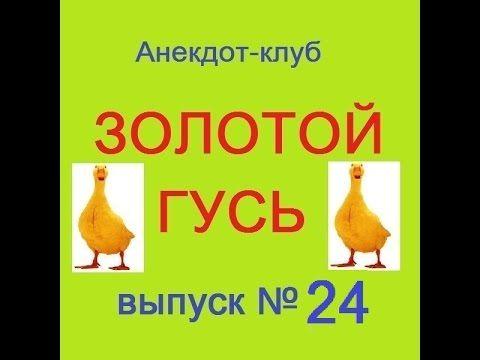 Анекдоты - Золотой гусь № 24