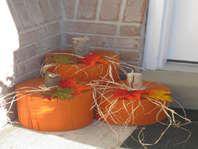 cute wooden pumpkins