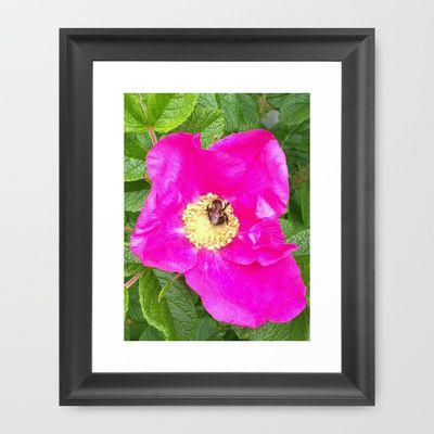 Flower Bee Framed Art Print by munziart - $32.00