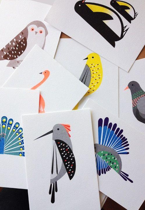 Bird Series Postcard Set | Scout Editions | Buiten de Lijntjes