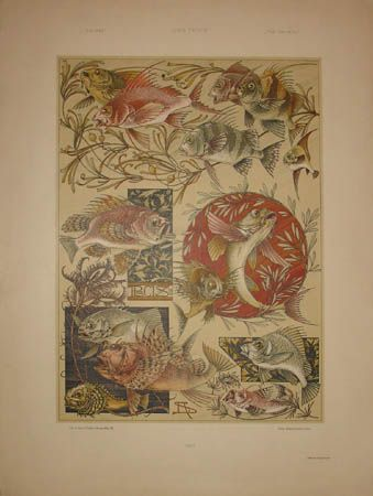 Art Nouveau Fish by Anton Seder from Das Thier in der Decorativen Kunst, Vienna: 1896-1909, a sourcebook intended to provide inspiration for designers of fabrics, wallpaper, ceramics, book illustrations, posters and advertisements.