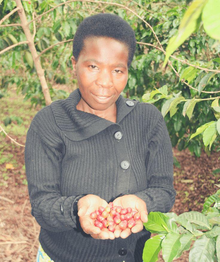 Wir sprechen mit Celine Mukanterina, Kaffeebäuerin der Musasa Dukundekawa Kaffee-Kooperative in Ruanda, wie der Kaffeeanbau ihr Leben verbessert.
