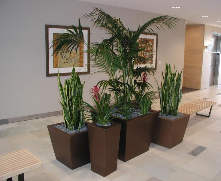 A bit professional for home, but I still like the tall pots, the grouping, and the matching stones on top.