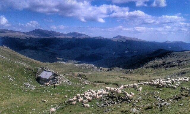 Mountain hut in Bucegi mountains, Romania.
