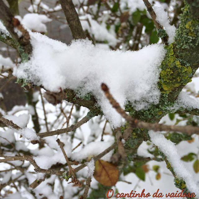 Quando cai a neve!