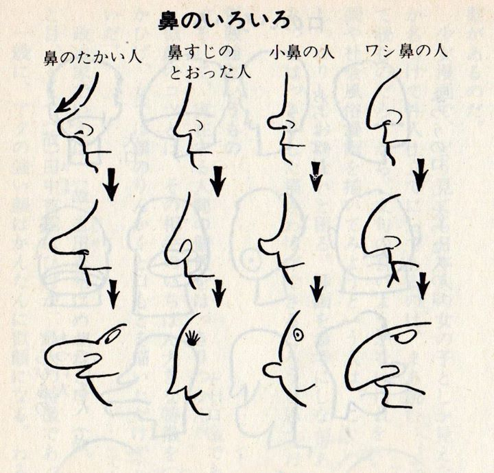Character Design Noses : Best images about character anatomy nose on