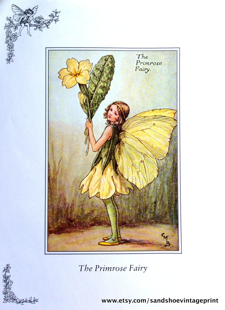 1930s The PRIMROSE Fairy and The by sandshoevintageprint on Etsy