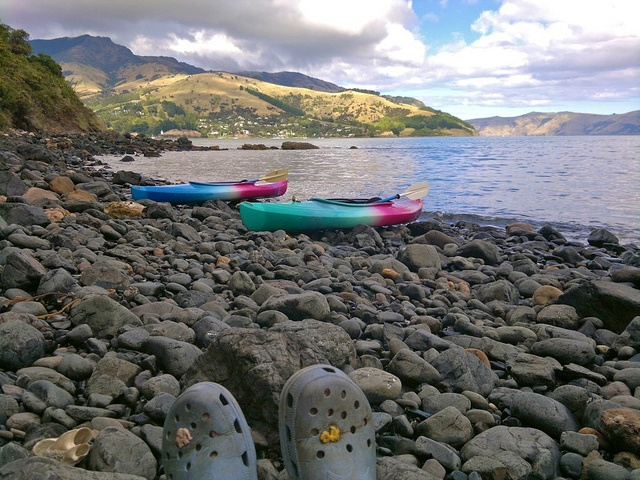 31 March  Kayaking in Akaroa again.