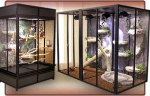 How to Build a Custom Reptile Enclosure