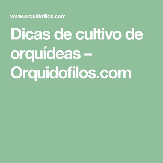 Dicas de cultivo de orquídeas – Orquidofilos.com