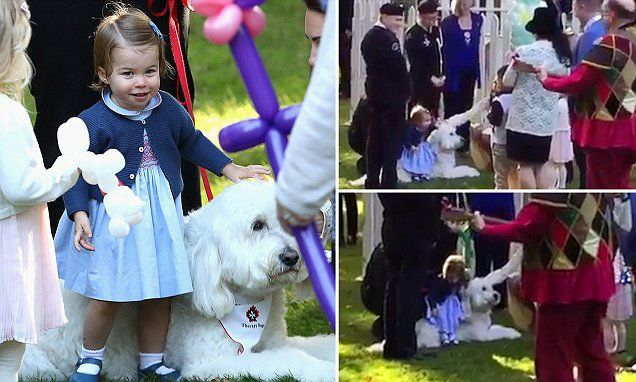 The princess and the poodle: Watch Princess Charlotte bounce on a dog