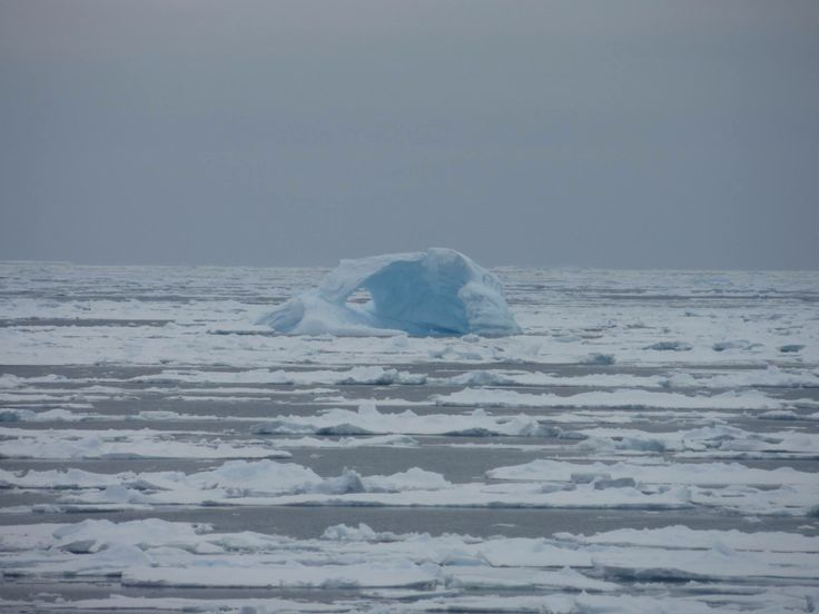All that remains of an #iceberg #bergybits #AmundsenSea