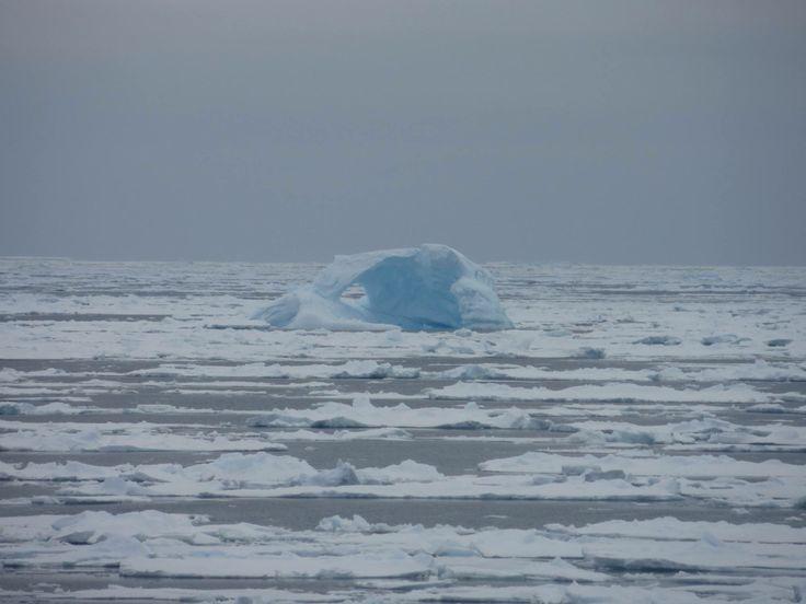 All that remains of an #iceberg #bergybits #AmundsenSea