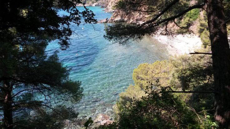A Cavalaire, entre la calanque du Cron et la plage de Bonporteau, une petite plage peu connue après une longue descente...