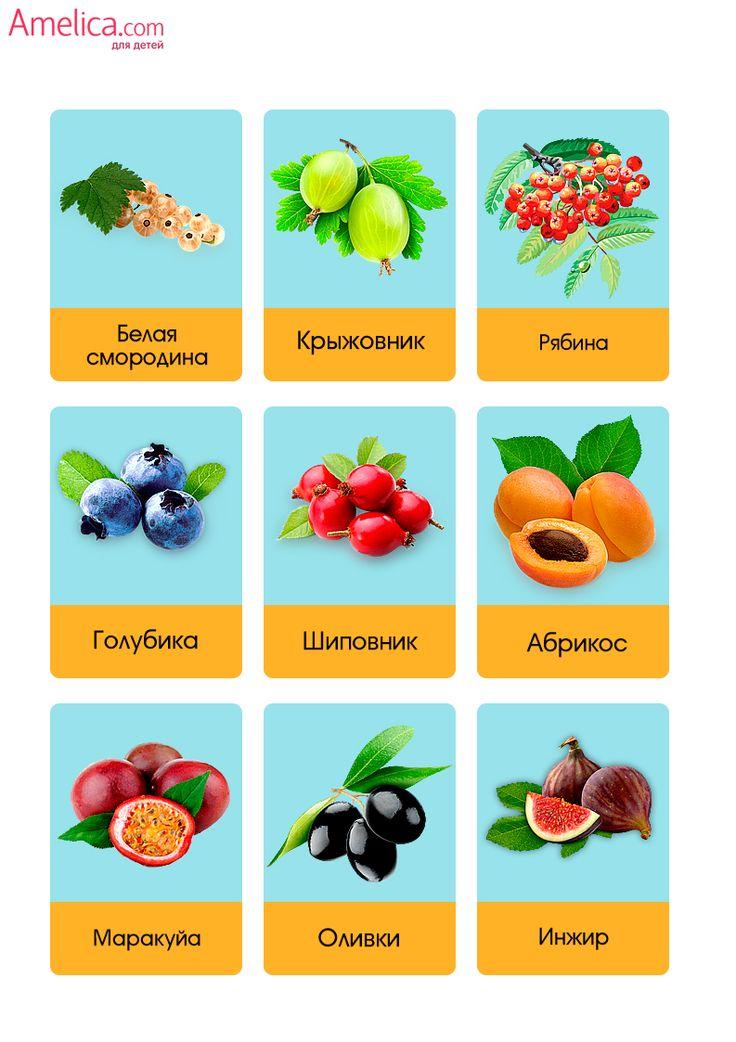 Фрукты картинки для детей от 0 до 6 лет, развивающие карточки фрукты и ягоды скачать бесплатно, распечатать