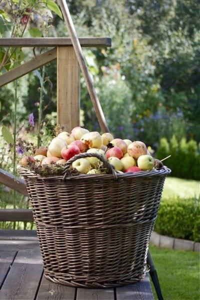 Grand Panier de pommes