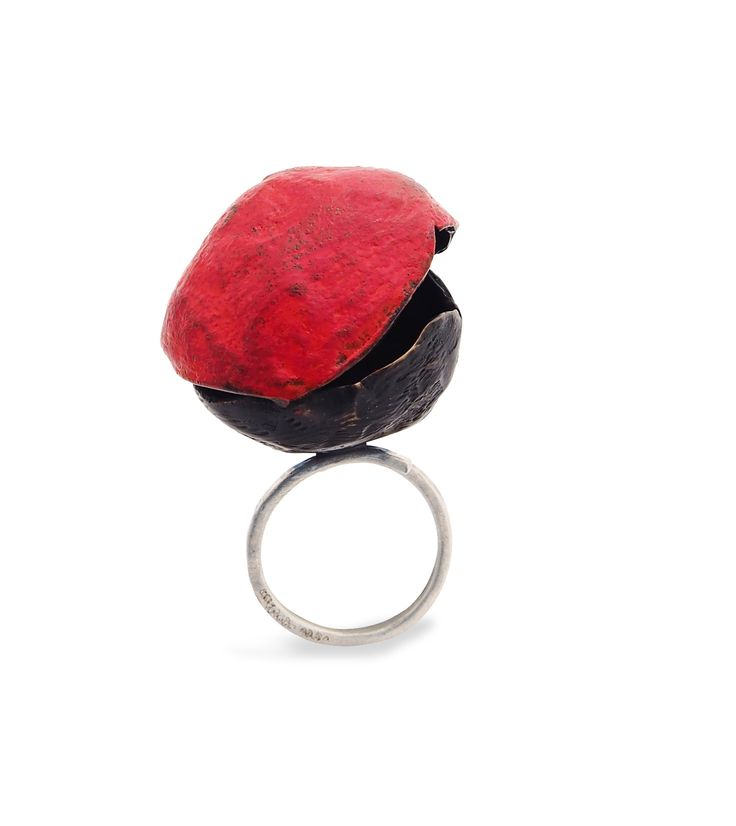 Victoria Ioannidou, Ring, 2014, bronze, silver, burnt acryics, oxidation.