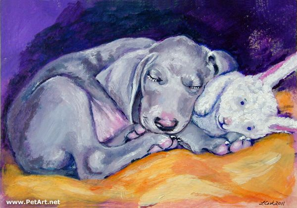 1000 Images About Weimaraner Art By Lyn Hamer Cook On