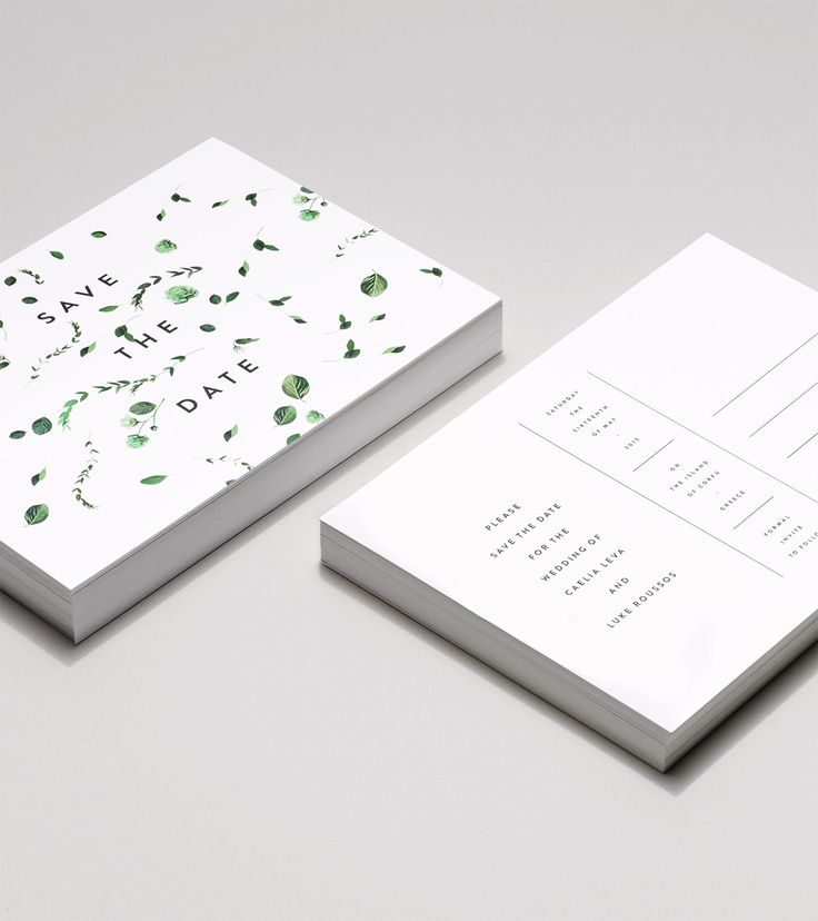Modern, botanical, minimal wedding invitations | Venamour - Viridan Collection